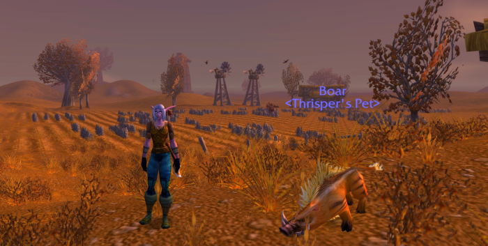 My Thoughts About World of Warcraft Classic – Book of Jen