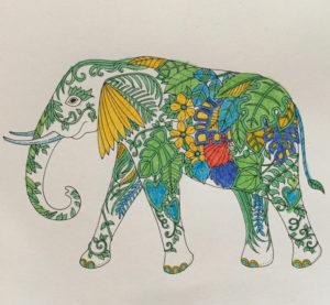 Johanna Basford 2019 Coloring Calendar – January
