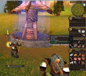 WoW Classic: Rites and Ceremonies
