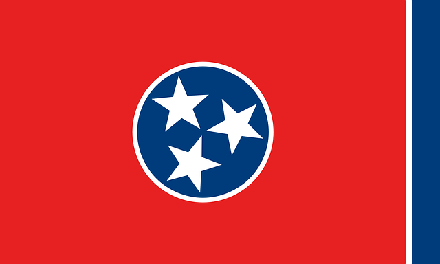 What Happened in the 2020 Tennessee Primary