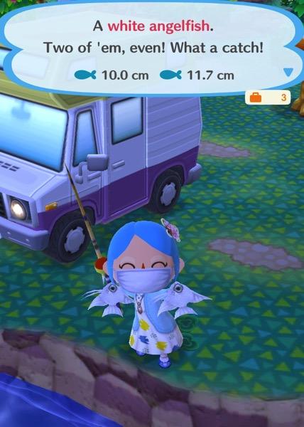 Animal Crossing Pocket Camp: Fishing Tourney (Wedding)