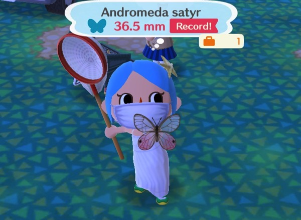 Animal Crossing: Pocket Camp – Butterflies