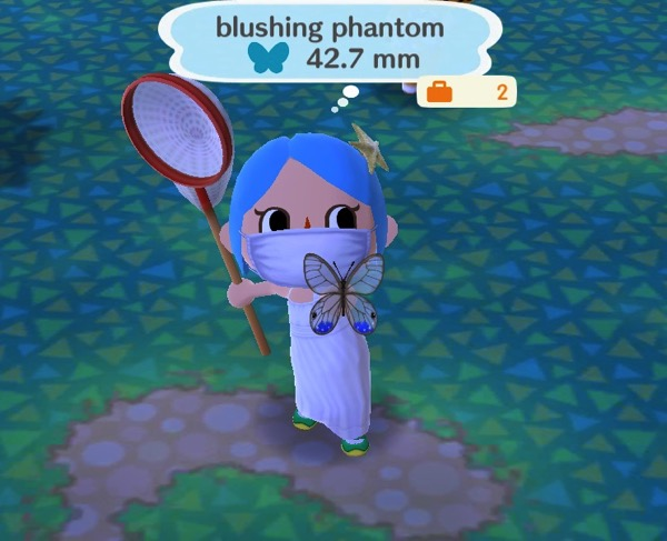 My Pocket Camp character holds up a pastel colored butterfly. The top two wings are nearly see-through. The bottom two wings have some blue color at the bottom.