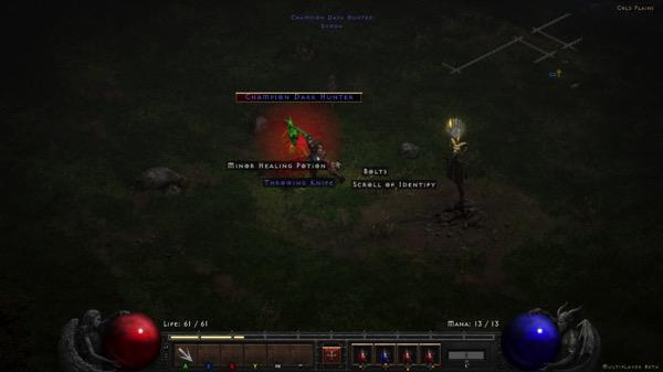 My Barbarian fights a green demon called Champion Dark Hunter.