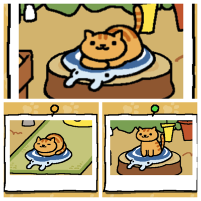 Fred is an orange cat with darker orange stripes. First image - Fred rests on Manta Ray mat. Second image - Fred naps on Manta Ray mat. Third image Fred awakens on Manta Ray mat.