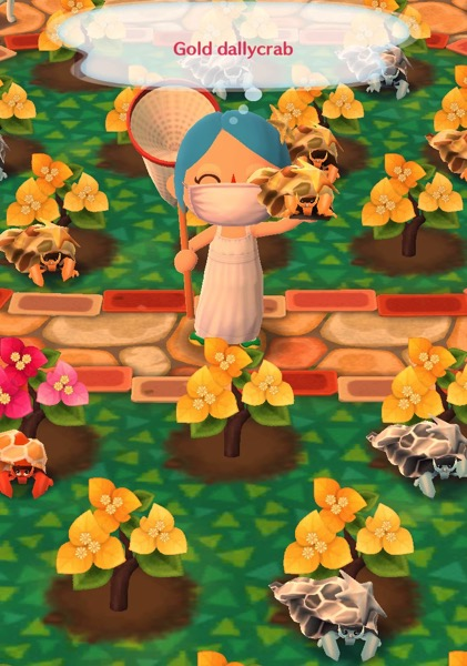 My Pocket Camp character holds up a gold dallycrab
