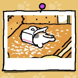 The back end of a calico cat with orange and white spots is sticking out of a Cake Box.
