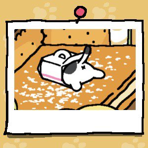 The back end of a white cat with black spots is sticking out of a Cake Box.