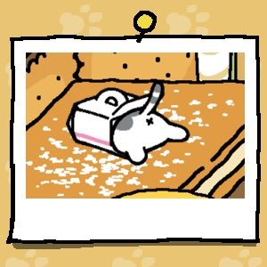 The back end of a white and grey cat is sticking out of the Cake Box.