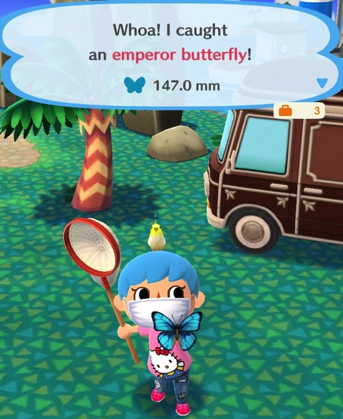 My Pocket Camp character holds up a medium sized butterfly. It is a bright blue color, with black around the ends of its wings.