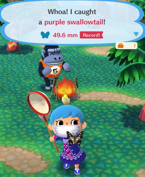 My Pocket Camp character holds up a butterfly that is mostly black in color. It has highlights of green, pink, and yellow on its wings.