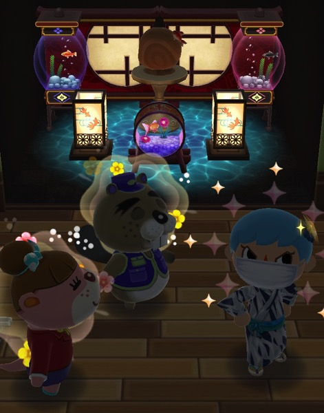 My Pocket Camp character has successfully completed this class.