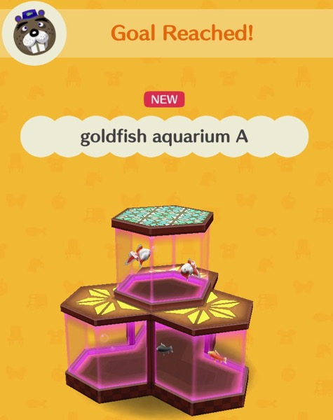 An aquarium with octagonal parts on the bottom and one more on the top. The top one holds two ranchu goldfish. The bottom one holds one black-wakin and one red-wakin. The glass is tinted pink.