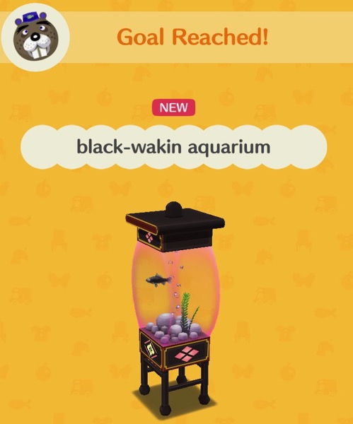 An aquarium with pink tinted glass holds one black-wakin goldfish, some rocks, a plant and bubbles.