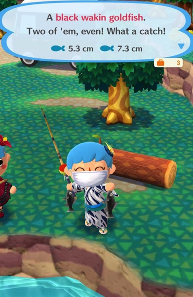 My Pocket Camp character holds up two black wakin goldfish.