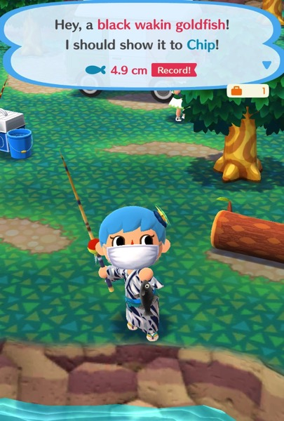 My Pocket Camp character holds up a black wakin goldfish.