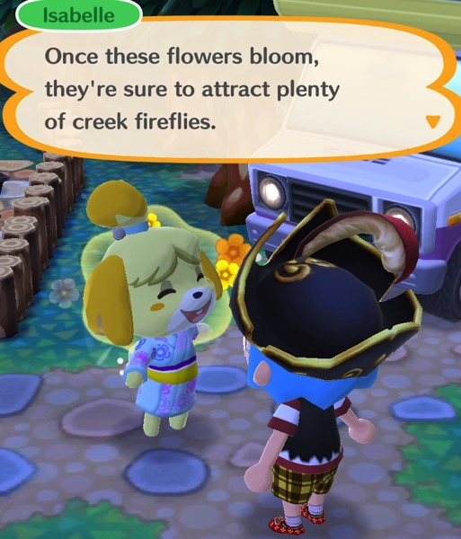Isabelle explains to my Pocket Camp character that the flowers will attract creek fireflies.