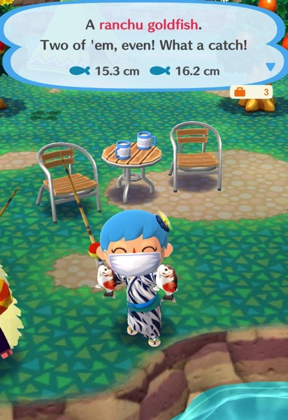 My Pocket Camp character holds up two round, fat, goldfish. The body of the goldfish is white, and it has orange and black spots.