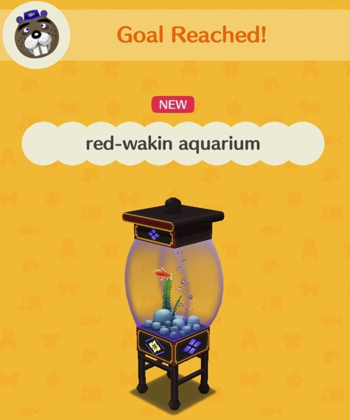A small aquarium that holds one red-wakin goldfish, a plant, rocks, and some bubbles.
