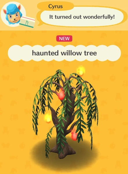 A willow tree has four glowing orbs floating around it. Two are yellow, and two are orange. This willow tree is haunted.